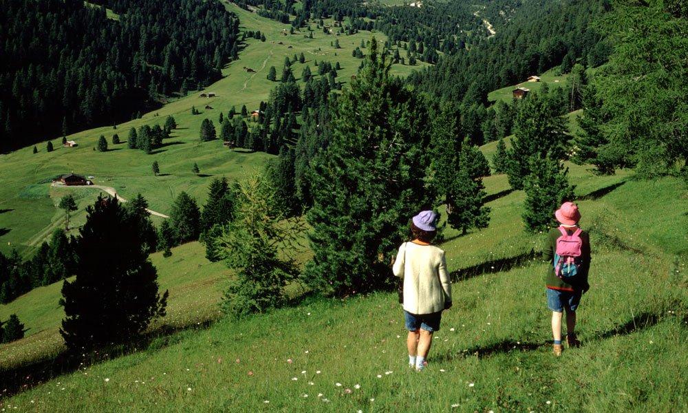 Naturpark Puez-Geisler: St. Ulrich - Seceda - Regensburger Hütte - Gamsbluthütte - St. Ulrich